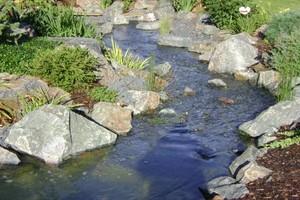 Photo #1: Aquatica. Pond and Water Garden Service
