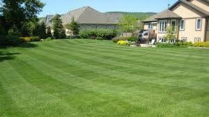 Photo #1: Lawn Care LLC - Mowing and Trimming / Insured (Watertown)