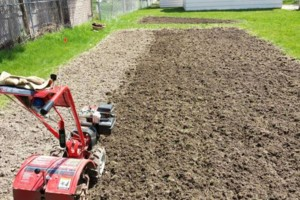 Photo #6: Tilling, Gardens, Foodplots, Any Size