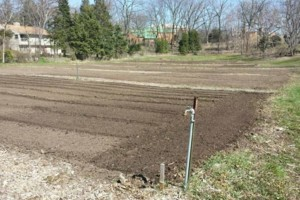 Photo #1: Tilling, Gardens, Foodplots, Any Size