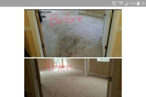 Photo #1: Carpet, Upholstery, Tile & Grout. DEEP Cleaning $99