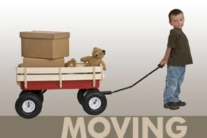 Photo #1: MOVING SOLUTIONS (diy style)