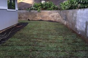 Photo #7: Loyalty Landscaping & Maintenance - onetime, biweekly or monthly
