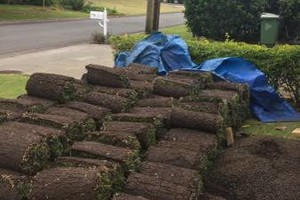 Photo #6: Loyalty Landscaping & Maintenance - onetime, biweekly or monthly