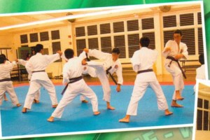 Photo #7: Karate Lessons - Youth to Adult - Beginners to Experienced