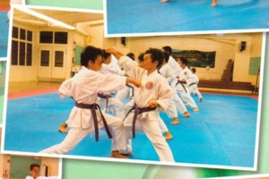 Photo #5: Karate Lessons - Youth to Adult - Beginners to Experienced