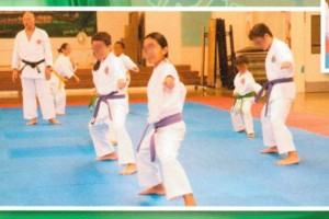 Photo #4: Karate Lessons - Youth to Adult - Beginners to Experienced