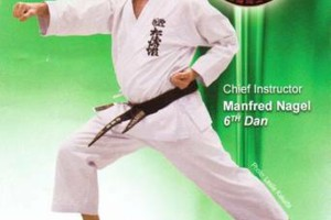 Photo #2: Karate Lessons - Youth to Adult - Beginners to Experienced