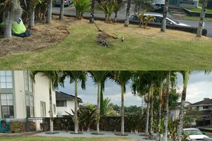 Photo #5: QUALITY at AFFORDABLE PRICES! OAHU COMPLETE YARD SERVICE!