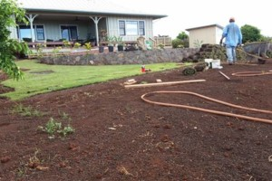 Photo #4: Chico's Landscaping/Irrigation System/Hauling