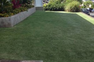 Photo #2: Cheapest Landscaping & Yard Service