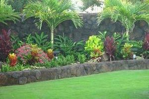 Photo #3: Landscape irrigation systems and planting service
