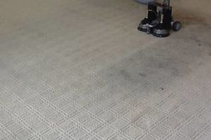 Photo #17: TRU SHINE. CARPET STEAM CLEANING (PRICES LISTED)