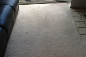 Photo #11: TRU SHINE. CARPET STEAM CLEANING (PRICES LISTED)
