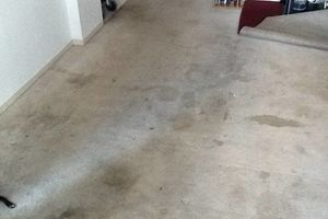 Photo #10: TRU SHINE. CARPET STEAM CLEANING (PRICES LISTED)