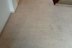 Photo #9: TRU SHINE. CARPET STEAM CLEANING (PRICES LISTED)