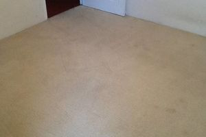 Photo #5: TRU SHINE. CARPET STEAM CLEANING (PRICES LISTED)