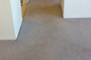 Photo #1: TRU SHINE. CARPET STEAM CLEANING (PRICES LISTED)