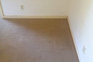 Photo #10: CCS Carpet Cleaning Solutions. Fast, Reliable, Guaranteed.