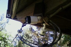 Photo #11: CCTV HD Surveillance Cameras Installed - Professional & Reliable.
