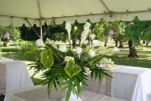 Photo #8: NORTH SHORE ALOHA CATERING. WEDDING PLANNING