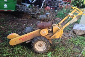 Photo #6: TREES, TREES, TREES, Landscape and tractor work