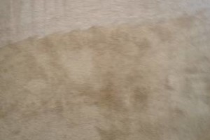 Photo #5: 3 ROOMS FOR JUST $85 CARPET CLEANING/MATTRESS