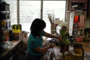 Photo #1: Added Decor for Party's- centerpeices! Kawamoto Orchid Nursery