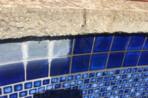 Photo #3: Swimming Pool Tile Cleaning