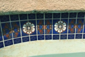Photo #1: Swimming Pool Tile Cleaning