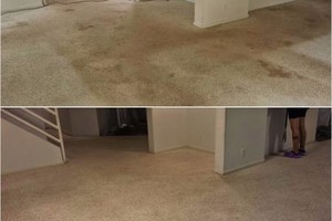 Photo #3: 5 stars 1st Class carpet cleaning