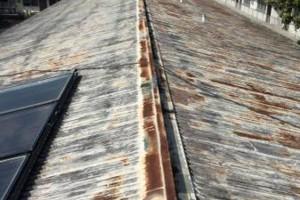 Photo #1: Roof Coatings - Gaco/Hydo-Stop