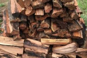 Photo #1: Kiawe Firewood for SALE