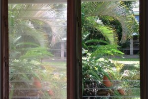 Photo #1: Professional Pressure Washing/Clear Windows