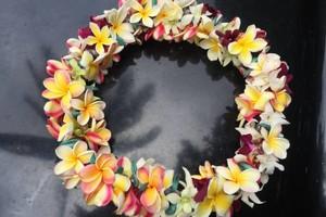 Photo #3: Kealoha WEDDING FLOWERS