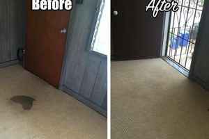 Photo #2: MOVE-OUT SPECIAL! $74.99 for upto a 2bedroom. Essential Carpet Cleaning