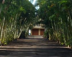 Photo #2: Aloha Lawn Care LLC - Weed Whacking, Edging, Blowing
