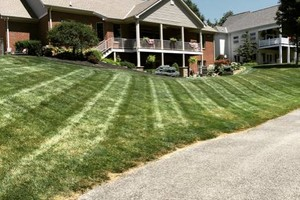 Photo #1: CME Lawn Care & Landscaping