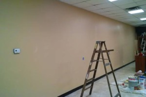 Photo #16: Franklin handyman services - Plumbing, Electric, Dry-wall