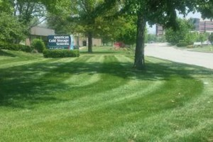 Photo #8: Grass cutting/ mowing. LOW price/ QUALITY work!