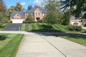 Photo #7: Grass cutting/ mowing. LOW price/ QUALITY work!
