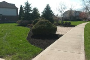 Photo #2: Grass cutting/ mowing. LOW price/ QUALITY work!