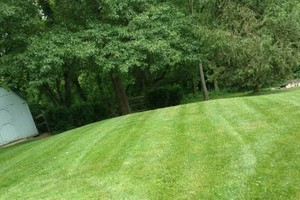 Photo #1: Home Lawn mowing & General services!