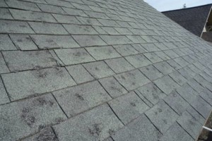 Photo #2: Arcane Exteriors. Roofing, Siding, and Solar