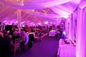 Photo #1: ATTENTION BRIDES! FREE UPLIGHTING! Book your Wedding Dj!