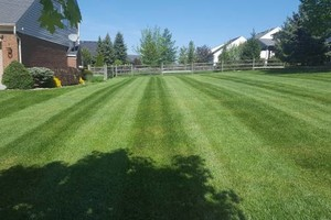 Photo #2: Curb Appeal Solutions. Mulching, mowing, landscaping