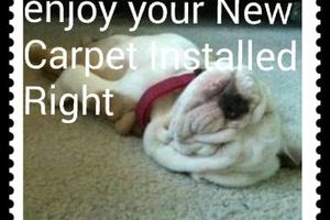 Photo #1: Carpet Installer Installation/Plugs
