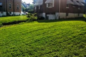 Photo #1: Green Kutz Lawn Care/Weed Control