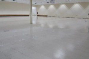 Photo #1: Carpet CLEANING - 5 rooms $99.99!!!