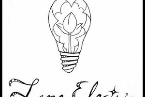 Photo #1: Lane Electric LLC. Professional Electrical Work At Discounted Rates!